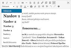 Pisanje za splet oblikovanje besedila 2
